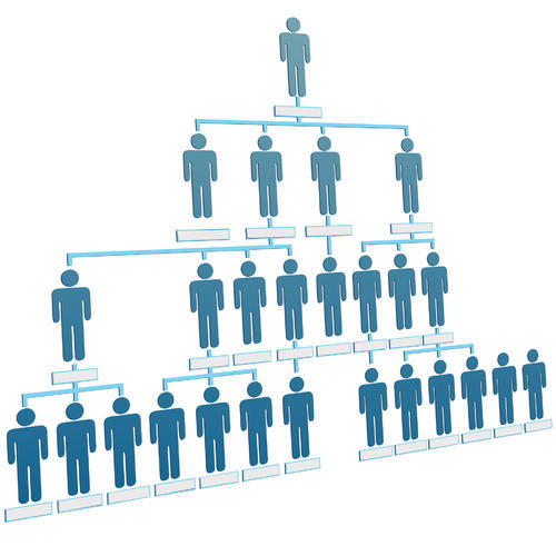 WHAT IS LEVEL PLAN IN MLM (HINDI)
