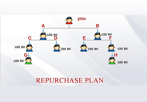 WHAT IS REPURCHASE PLAN IN MLM (ENGLISH)