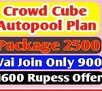 Crowd Cube Full Business Plan
