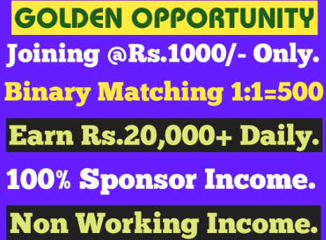JOIN 1000 BINARY 500 DAILY CAPPING 20000 DAILY PAYMENT