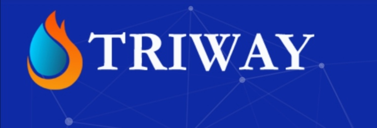 TRIWAY FULL BUSINESS PLAN